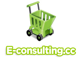 consultoría comercio electrónicos